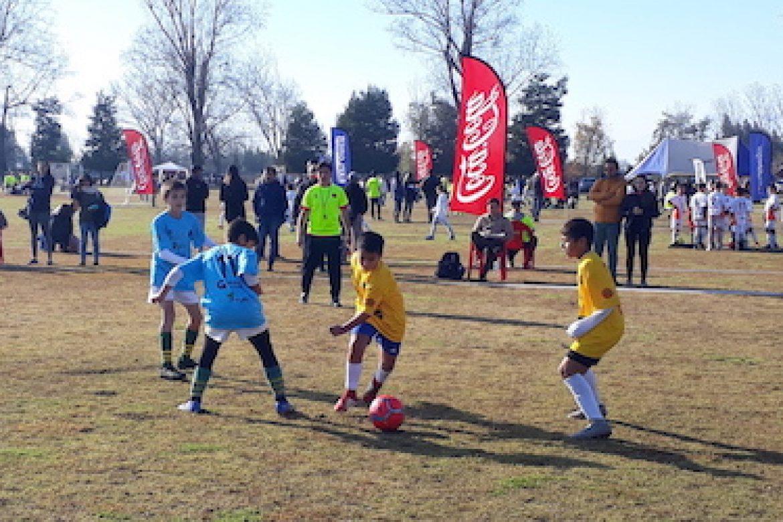 Copa Faro 2019