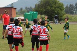 Festival de Rugby 1st a 4th grade Campo Deportivo - 2019
