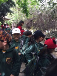 Visita al Buin Zoo, Kinder (19, Oct)